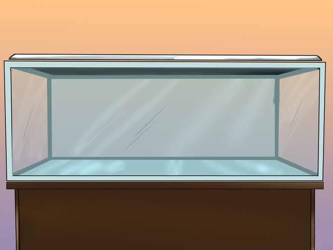 Размер аквариума