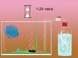 Как сделать реактор углекислого газа (CO2) для аквариума
